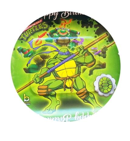 تم-تولد-پسرانه-لاکپشت-نینجا