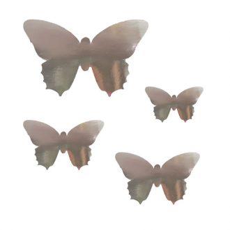 پروانه چسب دار نقره ای